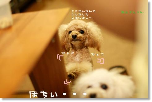 ブログ2008-03-11-09