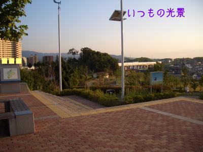 CIMG5156.jpg