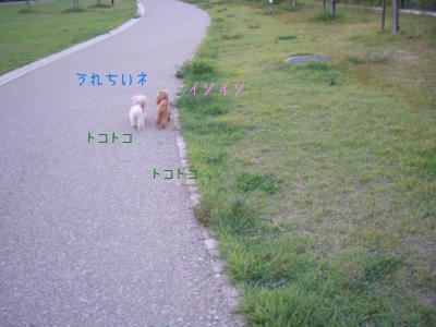 CIMG6569.jpg