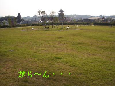 CIMG7062.jpg