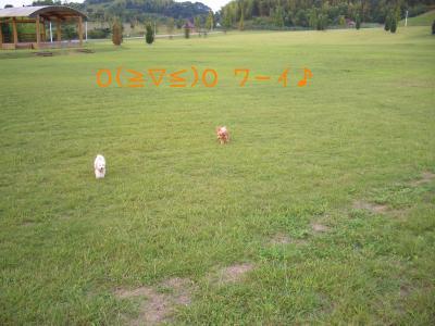 CIMG7089.jpg