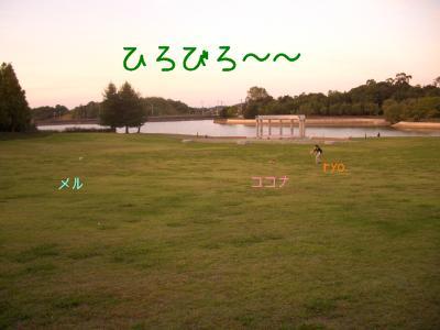CIMG9004.jpg