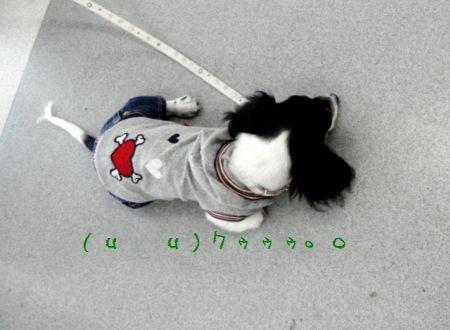DSC09202.jpg