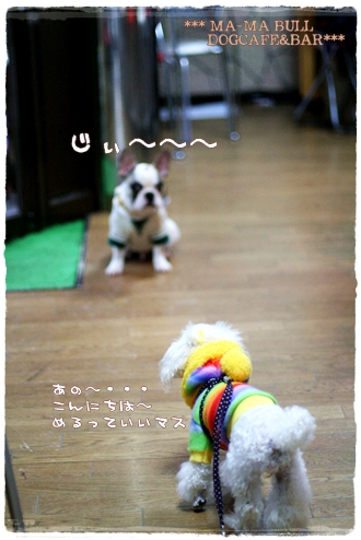 IMG_0206-5.jpg