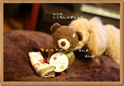 IMG_0214-6.jpg