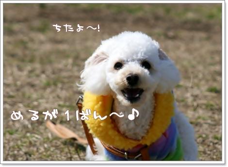 IMG_2008-03-06-10.jpg