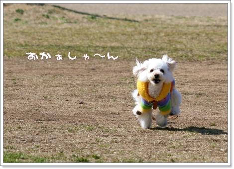 IMG_2008-03-06-6.jpg
