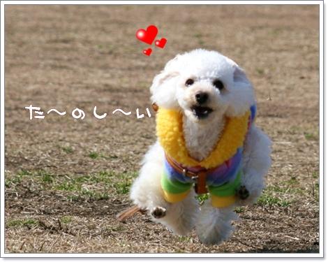 IMG_2008-03-06-8.jpg