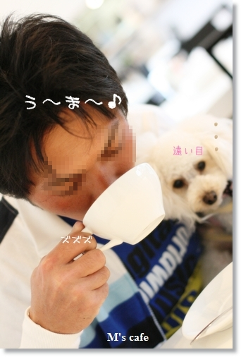 IMG_2008-03-30-2.jpg
