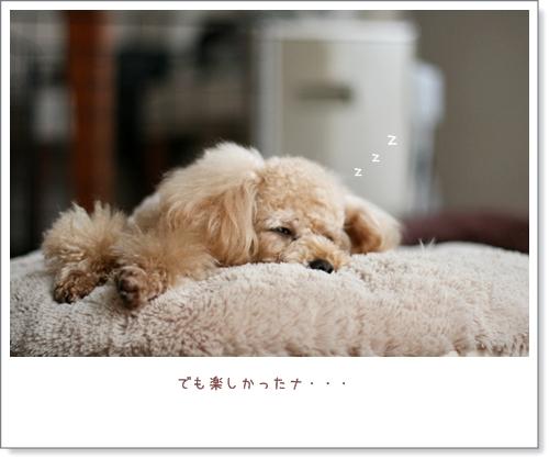 IMG_8483.jpg