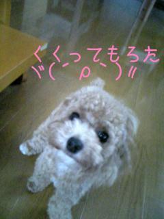 Image0569.jpg