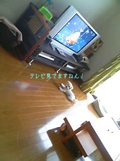 Image0639.jpg
