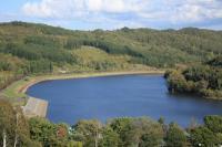 こんなカンジの湖です