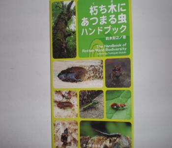 朽木に集まる虫ハンドブック