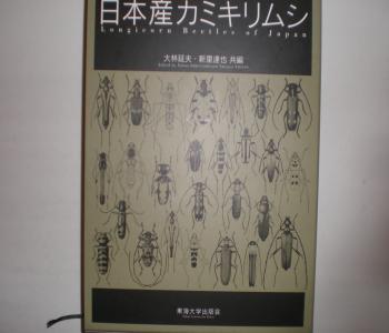日本産カミキリムシ