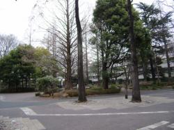 200803030001.jpg