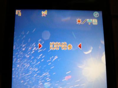 P1010095_convert_20100803195132.jpg