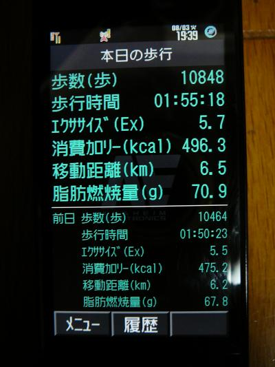 P1010097_convert_20100803195228.jpg