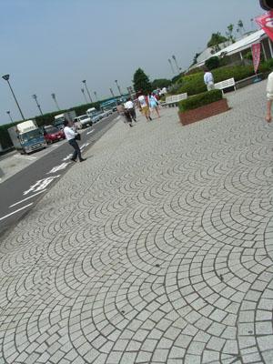070801C.jpg