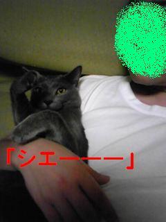 画像 006fc2