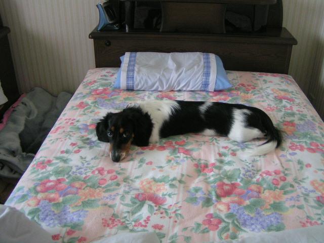 ベッドで1