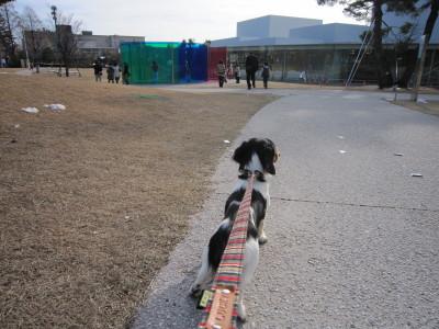 ママと散歩03