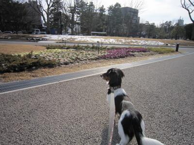 石垣散歩2