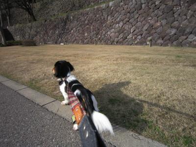 石垣散歩3