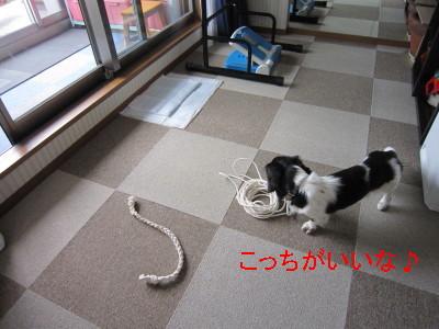 ロープ02