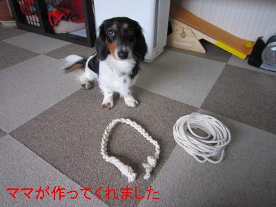 ロープ001