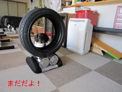タイヤ02