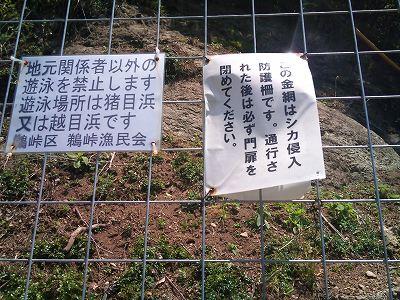 鵜戸大崎鼻3