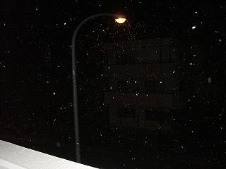 雪20101