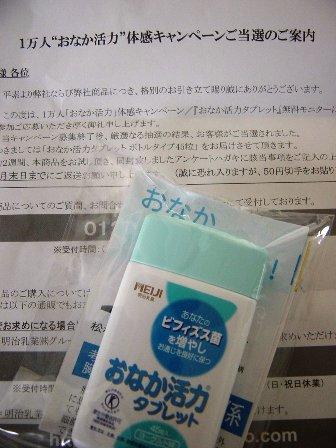 DSC01395.jpg