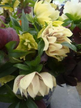 クリロー花束2
