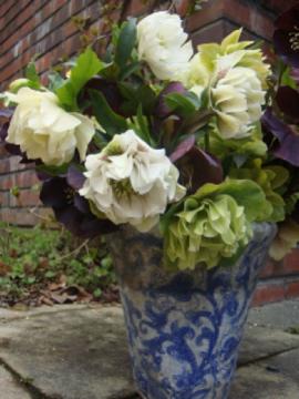 クリロー花束