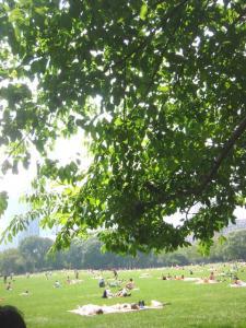 picnic-007.jpg