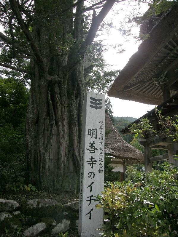 白川郷「明膳寺」
