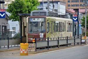 110807-Hakodate_Cat-b4.jpg