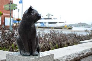 110807-Hakodate_Cat-e8.jpg