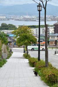 110808-Hakodate_Cat-f2.jpg