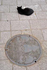 110809-Hakodate_Cat-b8.jpg