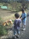 お兄ちゃん達と散歩♪