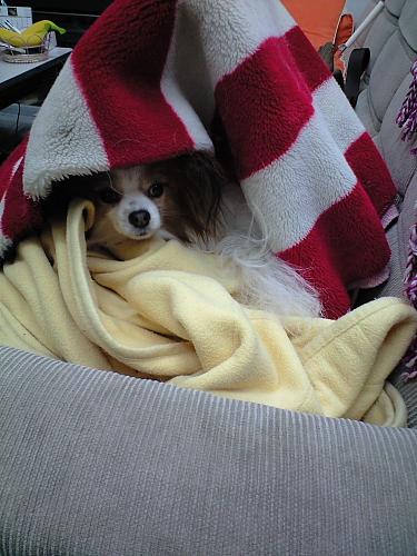 寒いときはここ!