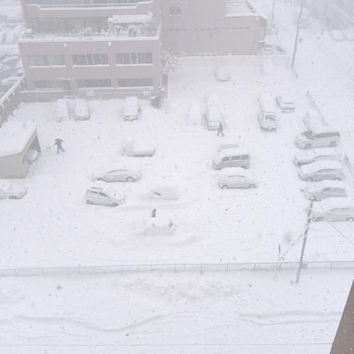 どこの雪国ですか?