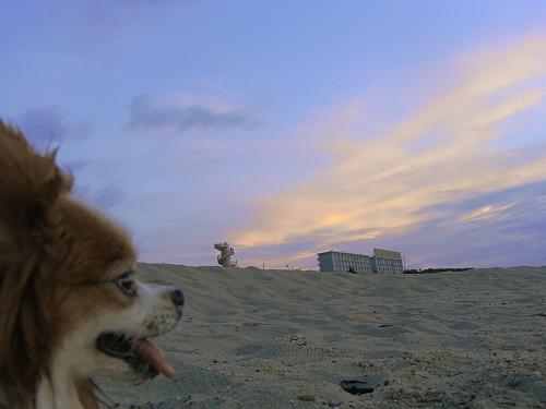 夕焼け空はきれいな色だったけど・・・