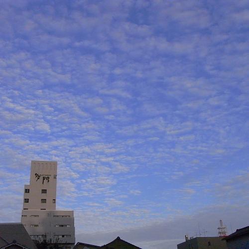 私はうろこ雲と呼ぶ
