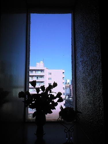 マンションから青空