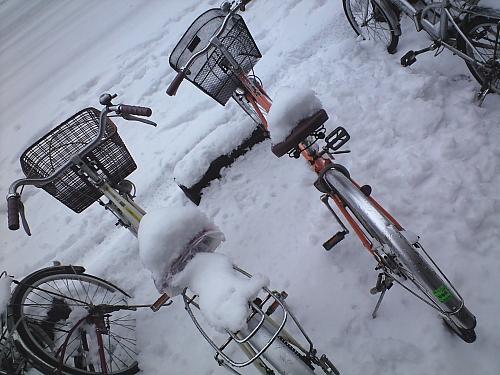 朝、私の自転車が・・・