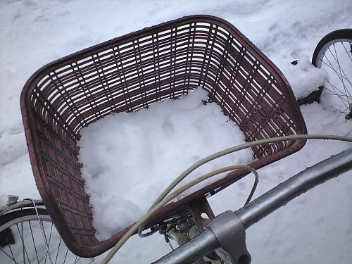 雪のお荷物が・・・